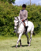 Class 14 - Riding club horse/pony (R1)